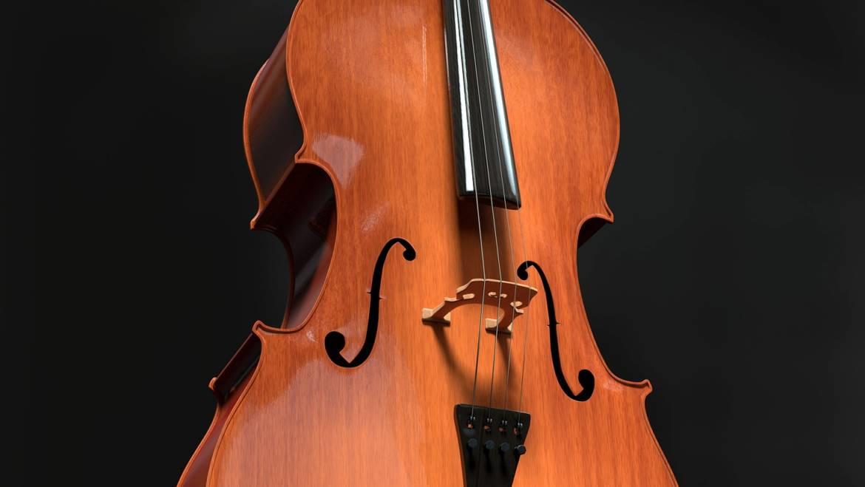Βιολοντσέλο
